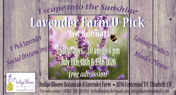 Lavender Farm U-Pick